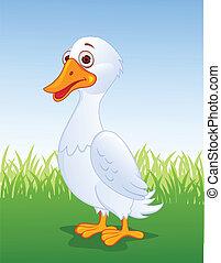 caricatura, pato