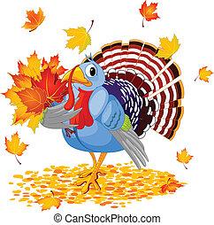 caricatura, pavo, con, otoño, ramo