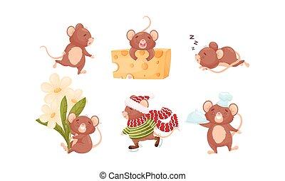 caricatura, segurando, laje, cor-de-rosa, rabo, rato, longo, vetorial, dormir, queijo, jogo, personagem