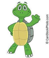 caricatura, tartaruga
