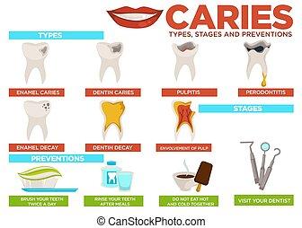 caries, typer, stages, og, forebyggelse, plakat, hos, tekst,...