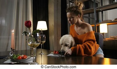 Caring female owner feeding dog friend from fork - Beautiful...