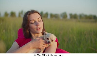 Caring female petting chihuahua dog outdoors - Portrait of ...