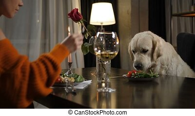 Caring woman feeding dog pet from own plate - Evening dinner...