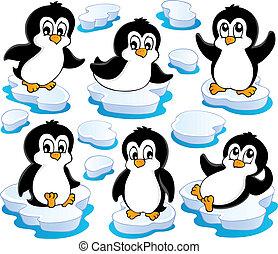 carino, 2, pinguini, collezione