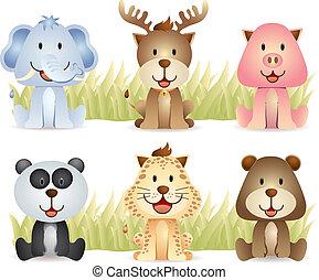 carino, animali, collezione