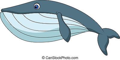 carino, balena, cartone animato