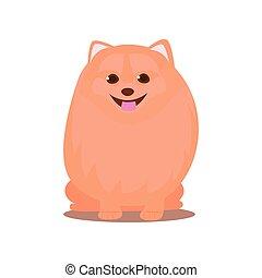 carino, cane, stare, posto, arancia, spitz, forte, rosso