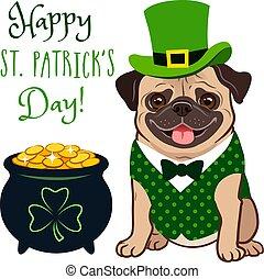 """carino, canottiera, costume:, folclore, cravatta, vaso, cima, irlandese, trifoglio, monete, oro, st., vacanza, pieno, segno, pug, text., theme., cappello, day!"""", giorno, cane, arco, verde, """"happy, gnomo, patrick's"""