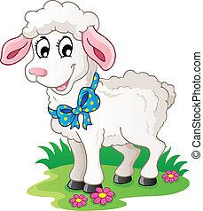 carino, cartone animato, agnello