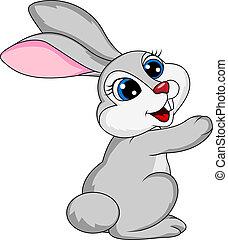 carino, cartone animato, coniglio