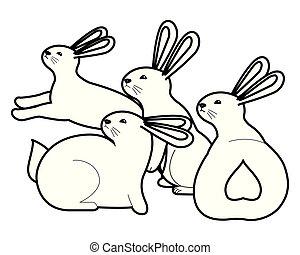 carino, conigli, tre, nero, cartoni animati, animali, bianco