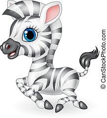 carino, correndo, zebra, isolato