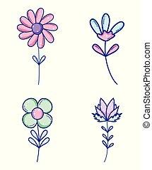 carino, fiori, set