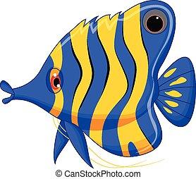 carino, fish, cartone animato, angelo