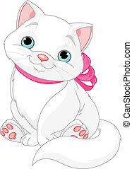 carino, gatto grasso