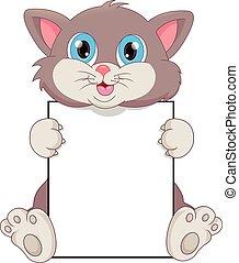 carino, gatto, vuoto, cartone animato, segno