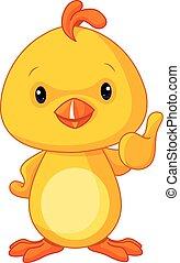 carino, giallo, pollo bambino