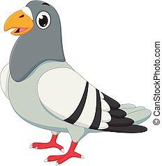 carino, piccione, cartone animato