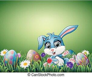 carino, poco, uova, campo, coniglio, decorato, pasqua, cartone animato