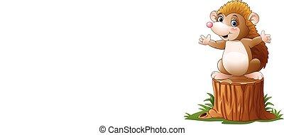 carino, riccio, albero, ceppo, cartone animato