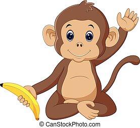 carino, scimmia