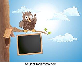carino, seduta, illustrazione, vettore, ramo, chalkboard., gufo, cartone animato