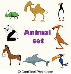 carino, set, animali