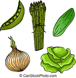 carino, set, verdura, mano, vettore, cinque, disegnato