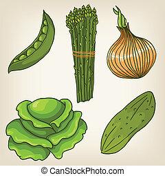 carino, set, verdura, mano, vettore, disegnato