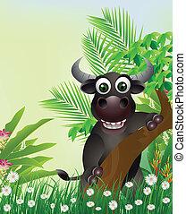 carino, sorridente, bufalo, cartone animato