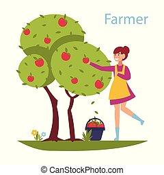 carino, stile, illustration., affari, mietere, efficiente, concept., -, appartamento, riuscito, albero., disegno, mele, collects, ragazza, agricoltura, raccogliere, composizione