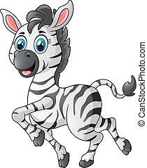 carino, zebra, correndo