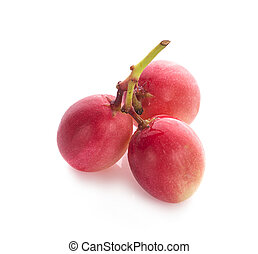Carissa carandas fruit on white background.