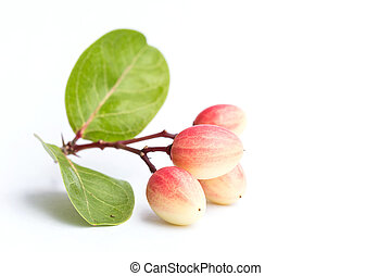 Carissa carandas L. tropical fruit isolated on white background