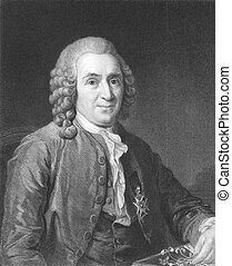 Carl Linnaeus (1707-1778) on engraving from the 1800s. Swedish botanist, physician, and zoologist, known as the Father of modern taxonomy, and also considered as one of the fathers of modern ecology. Engraved by C.E.Wagstaff and published in London by Charles Knight, Ludgate Street..