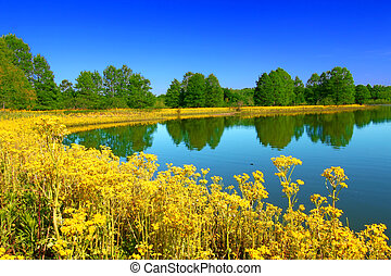Carlyle Lake Hazlet State Park - The Peppenhorst Branch of...