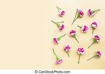 Carnation flower on yellow background.