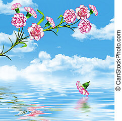 carnation flowers on a background of blue sky with clouds