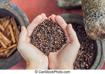 Carnation seasoning in female hands, carnation grains, herbal medicinal herbs, dry carnation grains in a dish