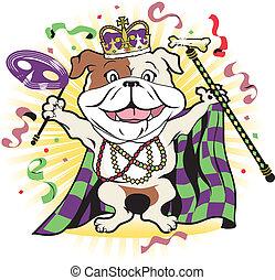 carnaval, perro callejero