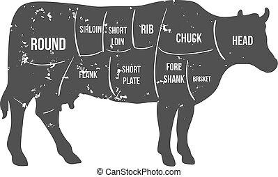 carne de vaca, vendimia, carnicero, diagrama, vector, cortes