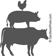 carne di maiale, animali, mucca, fattoria, vettore, pollo