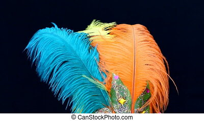 Carnival feathers - Colorful carnival feathers isolated on...