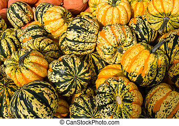 Carnival squash at the market - Carnival winter squash on...