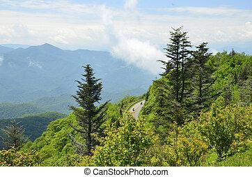 carolina, appalachian, północ, góry, usa