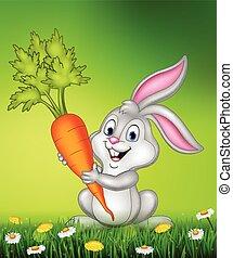 carota, coniglio, presa a terra