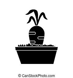 carota, giardino, letto, pictogram