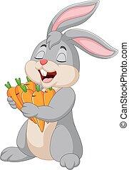 carote, cartone animato, coniglio, presa a terra