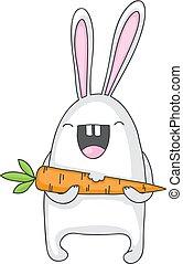 carotte, lapin